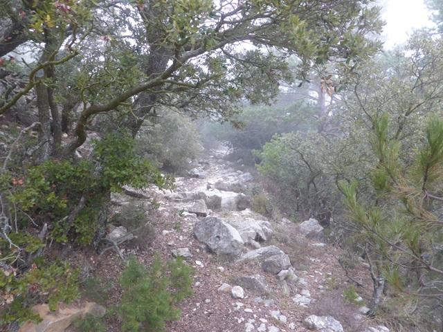 03cim17-18 riu pedra