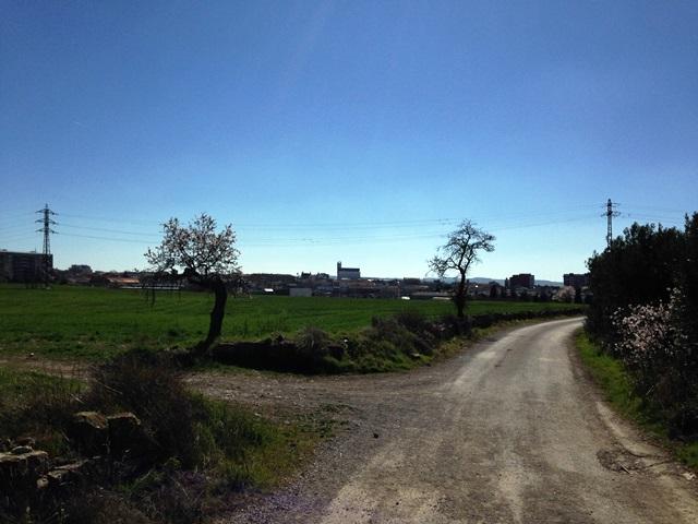 11 Castells2014