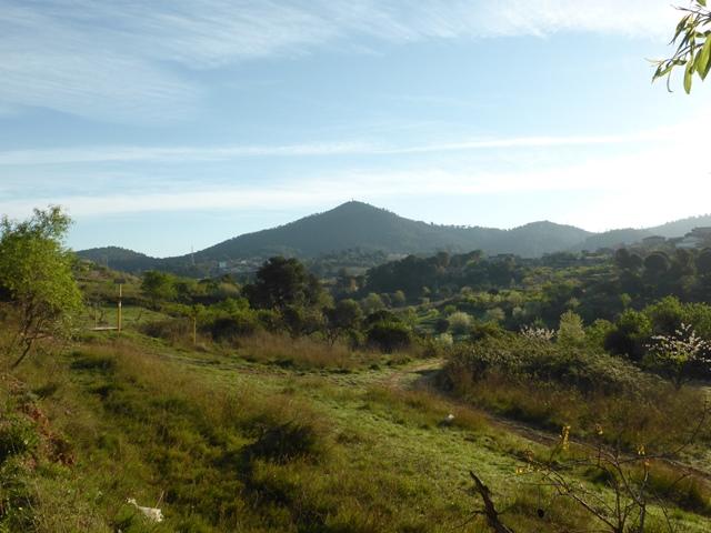 01 cim19 a 22 Puig madrona