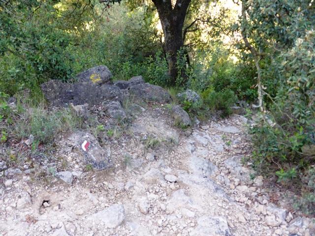 04 cim32 WP2 seguir cap a l'esquerra per on hi ha les pedres