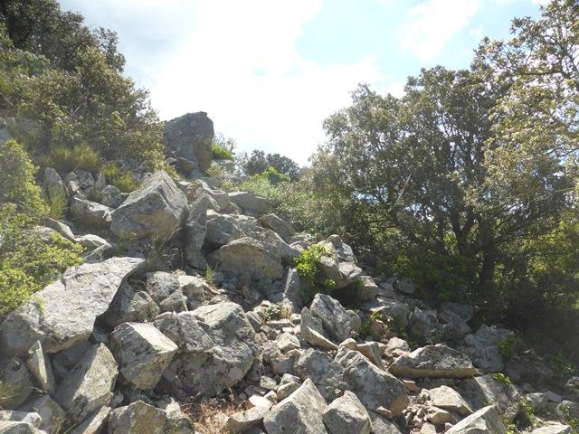19 cim33 WP6 Zona cami pedra